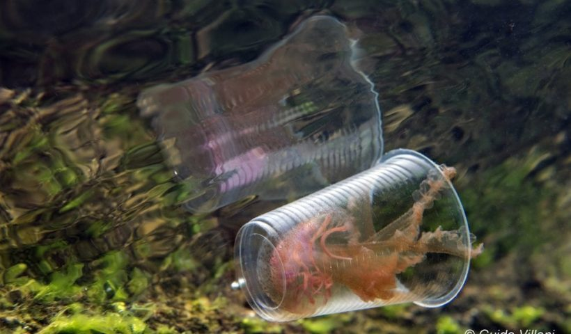 Killer trasparente, di Guido Villani