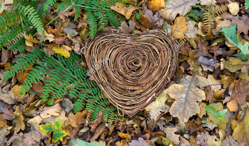 Natura Romantica (Fonte: Alamy)