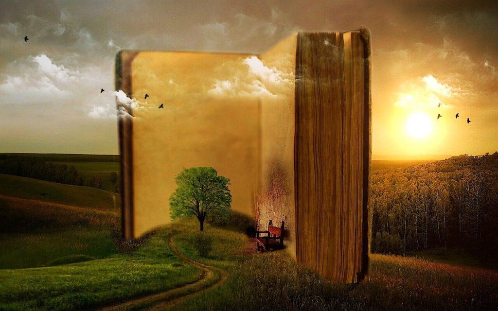 Ambiente e cultura: un connubio perfetto. Un albero enorme cresce tra la vegetazione, una panchina si intravede tra le sue pagine. Ti siedi, inizi a leggere e ti perdi in quel mondo descritto, diventi tutt'uno con il protagonista.